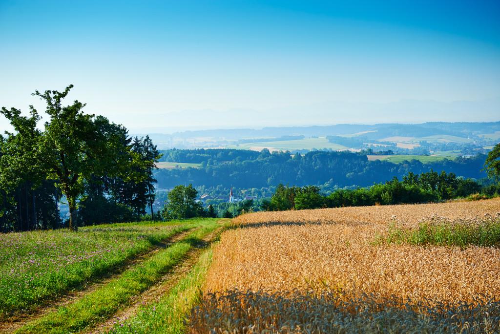5 Landschaft